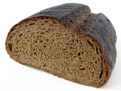 Ricette bimby pane di segale