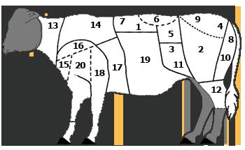 I tagli del vitello sono molto simili a quelli di un bovino adulto 0f68c10f2900